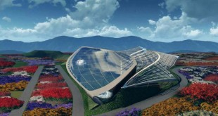 Horticulture-Expo-in-Qingdao_--HKS-02