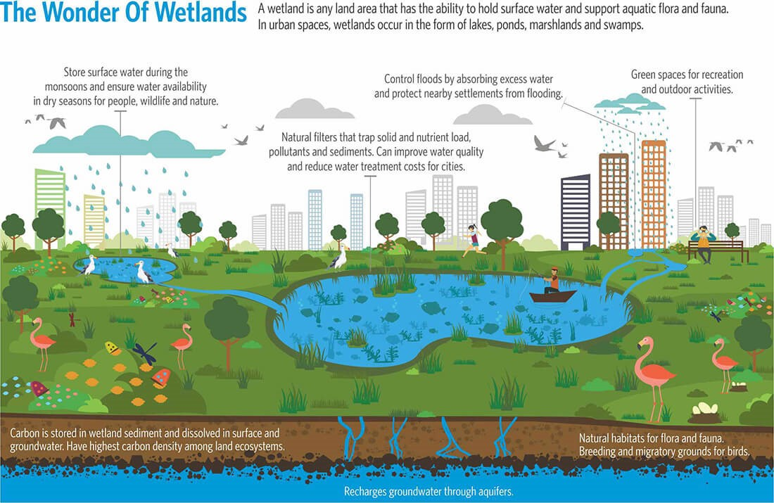 The Life of Waterbodies - Sheet6