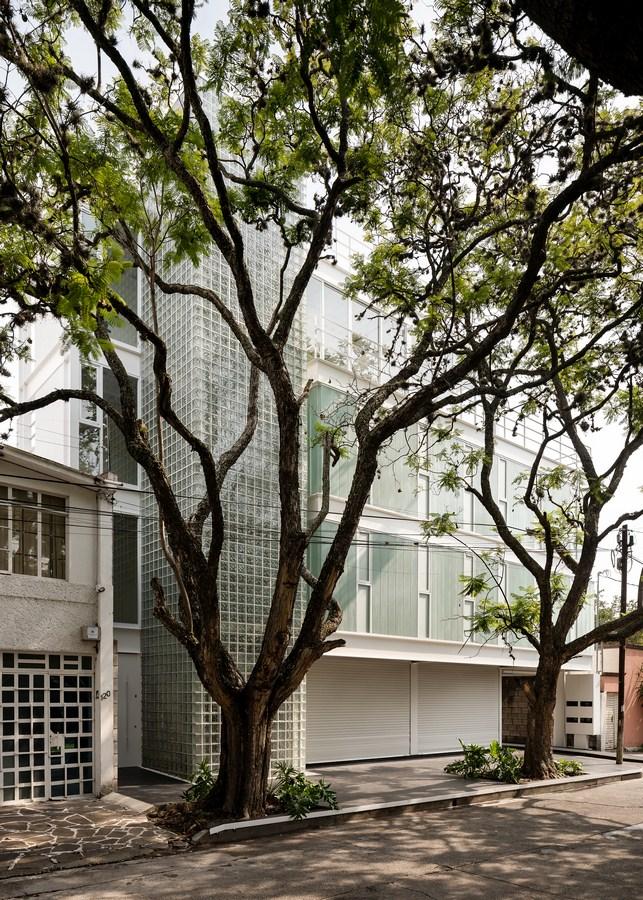 Avenida Central Building By Emilio Alvarez Abouchard Arquitectura - Sheet7