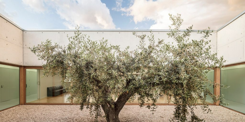 Day center and Home for the elderly of Blancafort By Guillem Carrera - Sheet15
