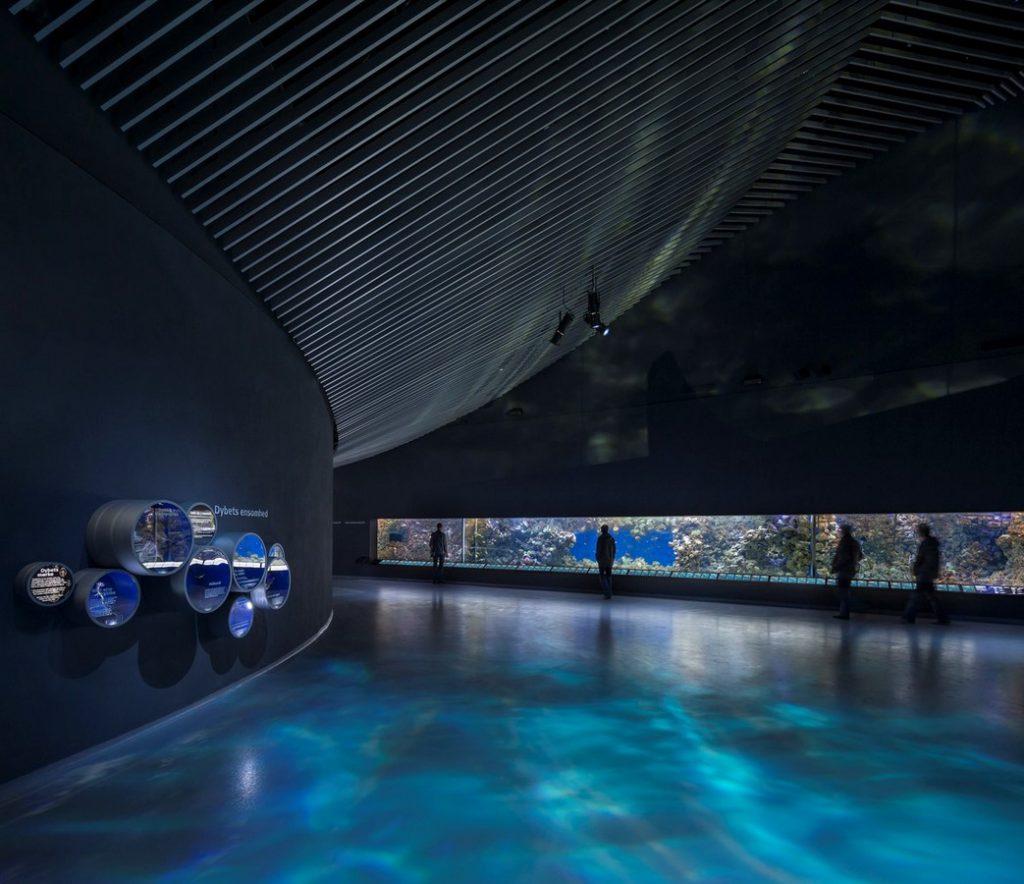 15 Places to visit in Copenhagen-NationalAquarium - 3