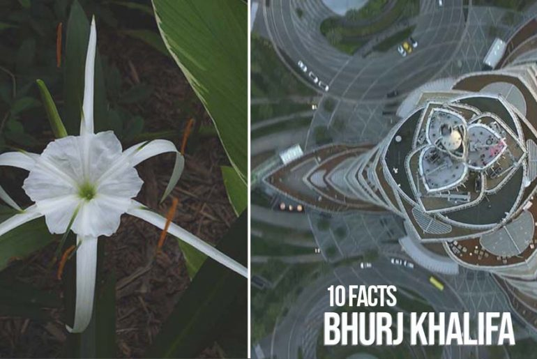 10 Facts You Did Not Know About Bhurj Khalifa - Rethinking The Future