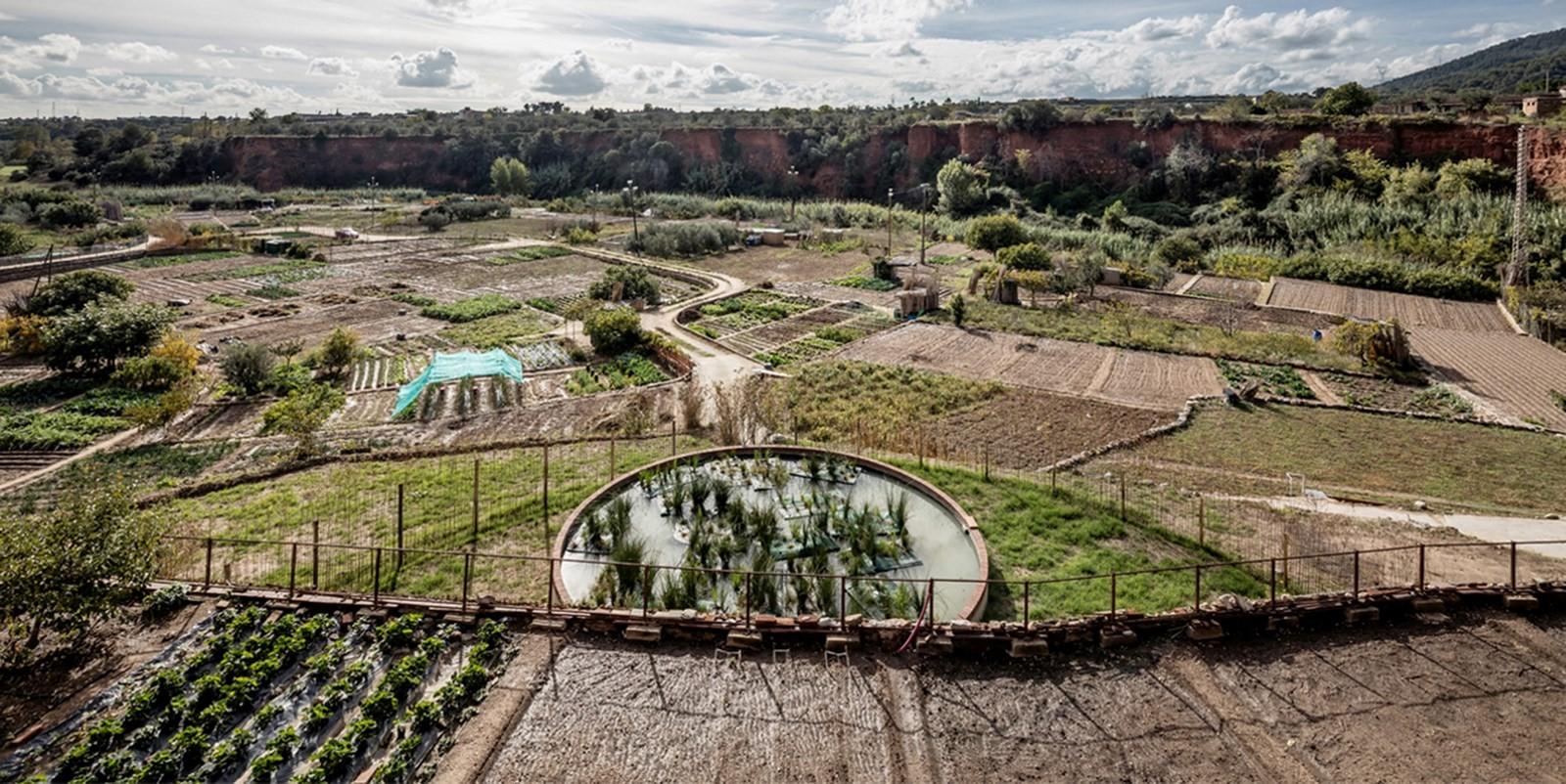 Thermal Orchards, Caldes de Montbui, Spain - Sheet1