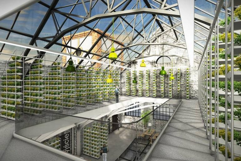 Hydroponics- A Growing Trend in Architecture