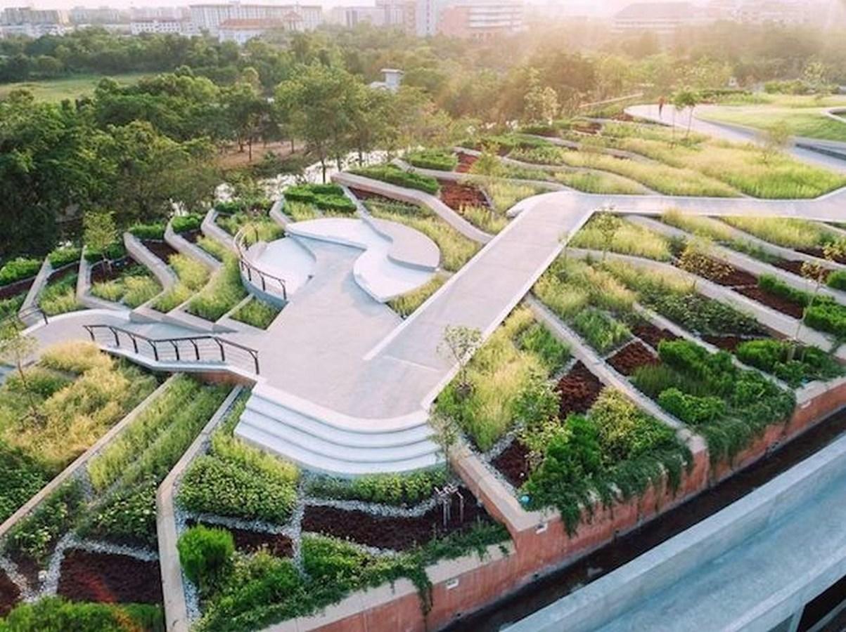Kotchakorn Voraakhom- Fighting Climate Change-Kotchakorn Voraakhom-Thammasat University