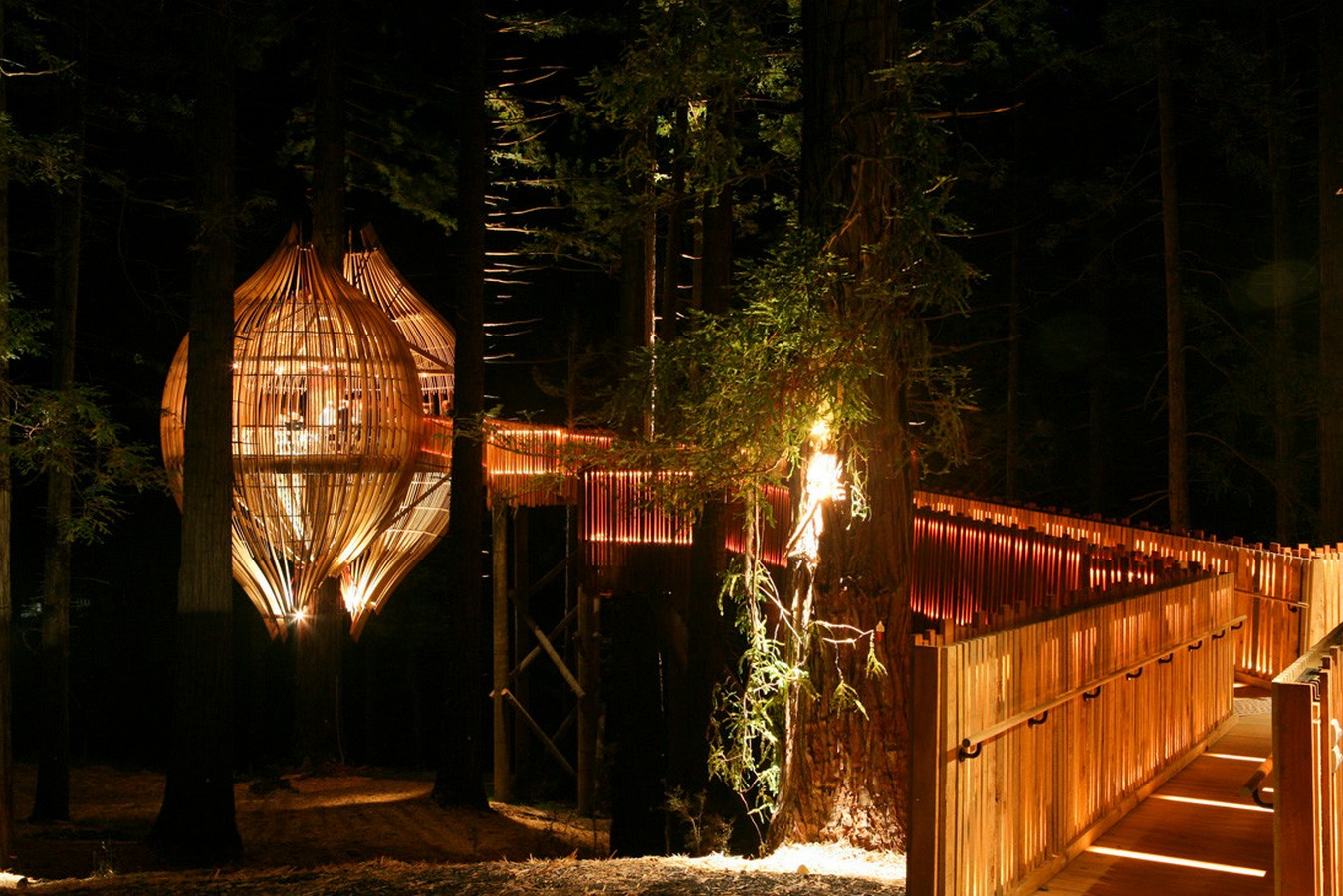 Yellow Treehouse Restaurant - Sheet3