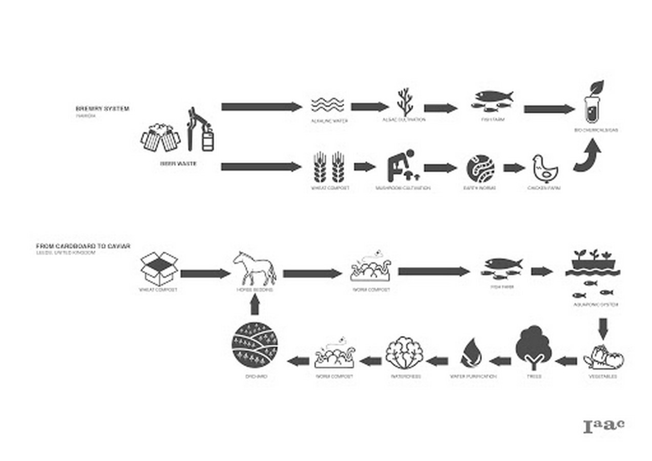 The history of Biomimicry and Architecture - Sheet8