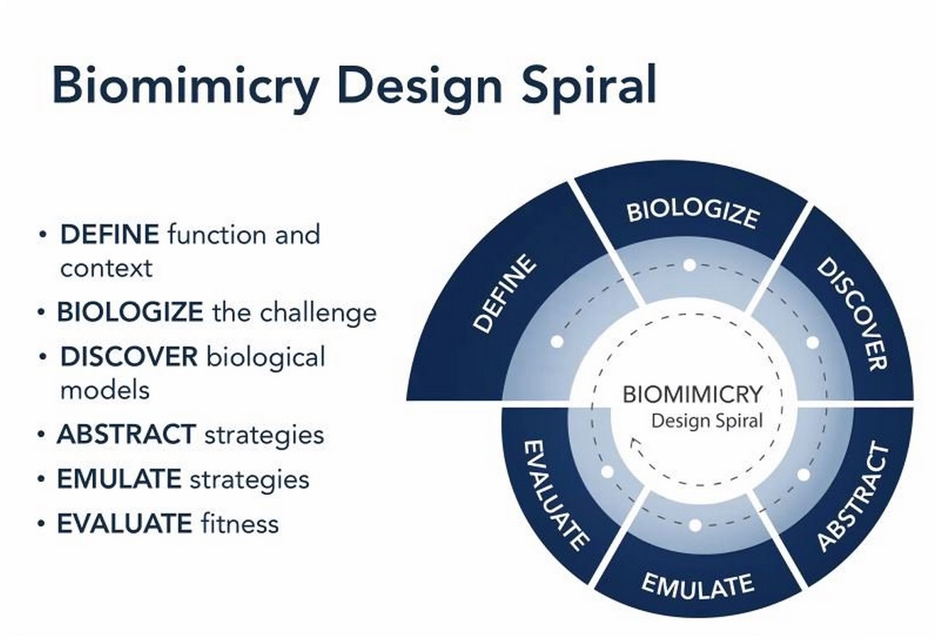 10 Things to remember when designing with biomimicry - Sheet2