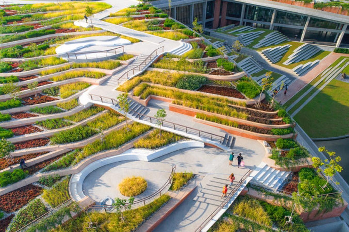 Thammasat University Urban Rooftop Farm - Sheet3