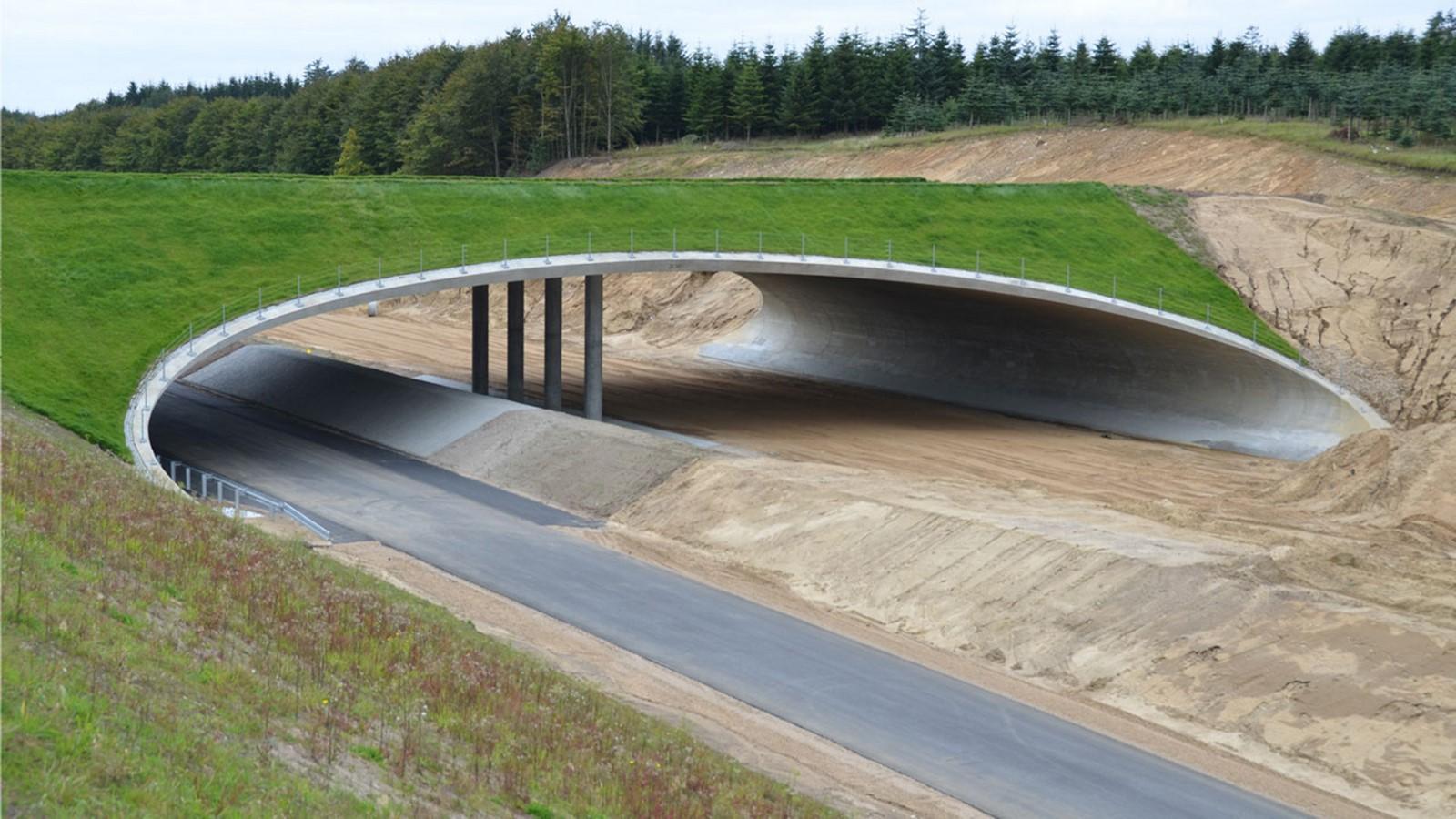 Fauna Bridge Denmark - Sheet2