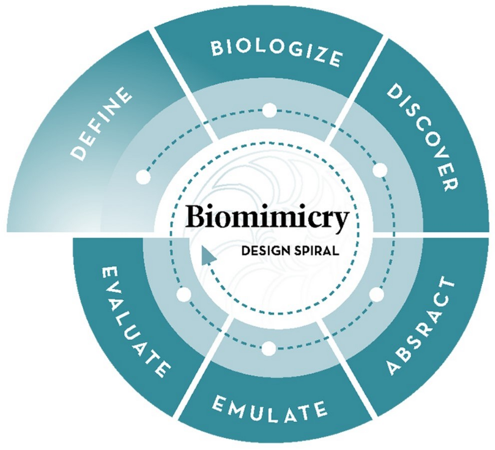 10 Facts about biomimicry that architects must know - Sheet1