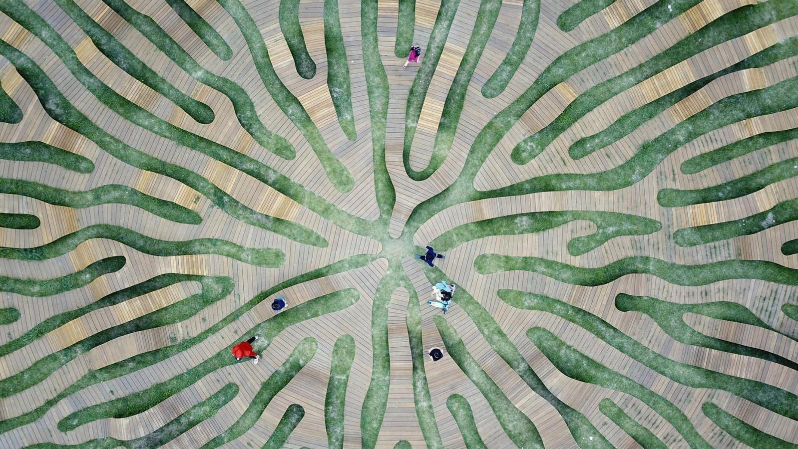 Root Bench by Yong Ju Lee - Sheet2