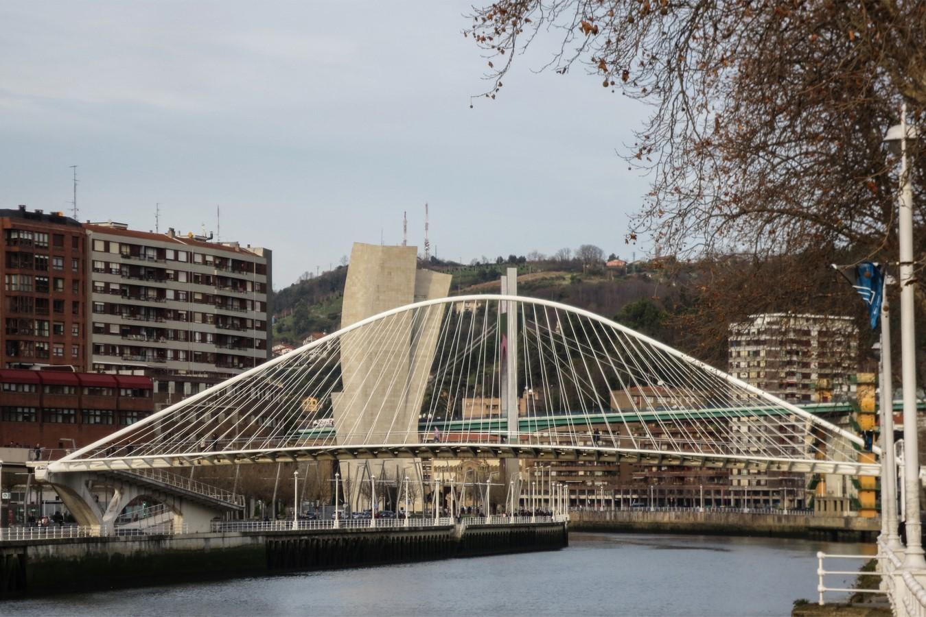 Zubizuri Bridge - Sheet2
