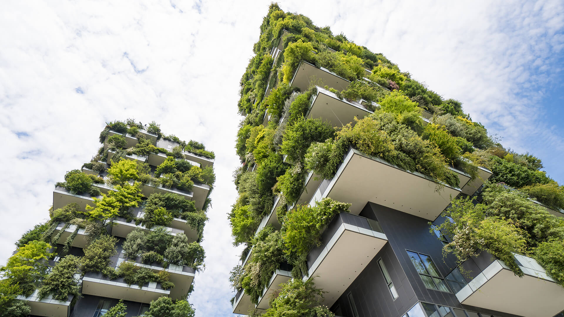 10 Things architects learn about in Environmental studies in college - Sheet2