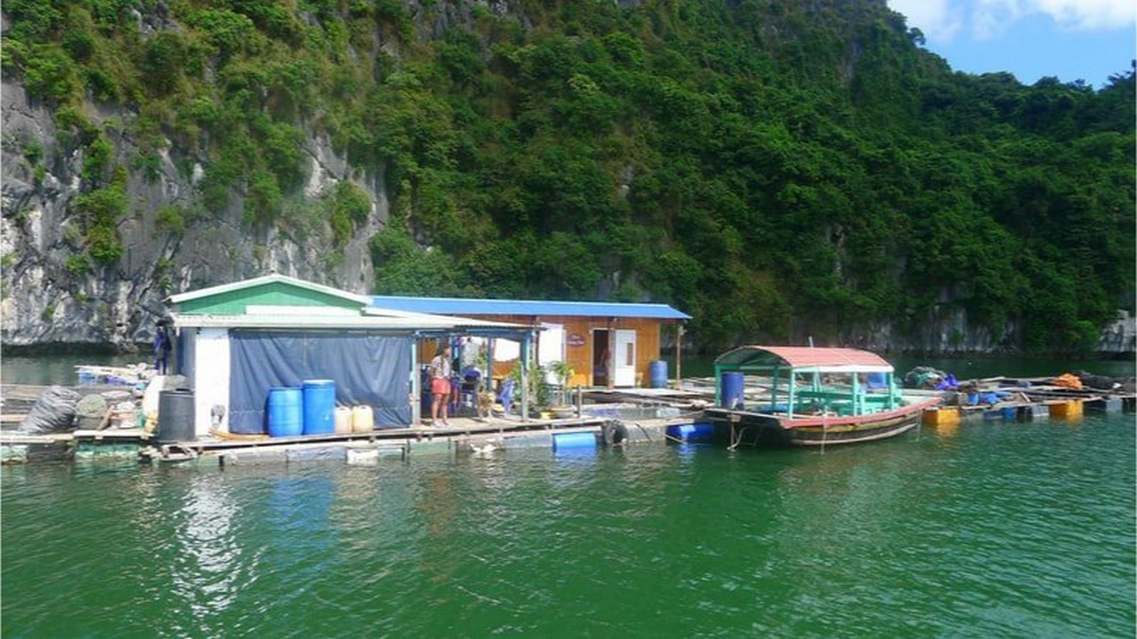 Cat Ba Island In Vietnam - Sheet3