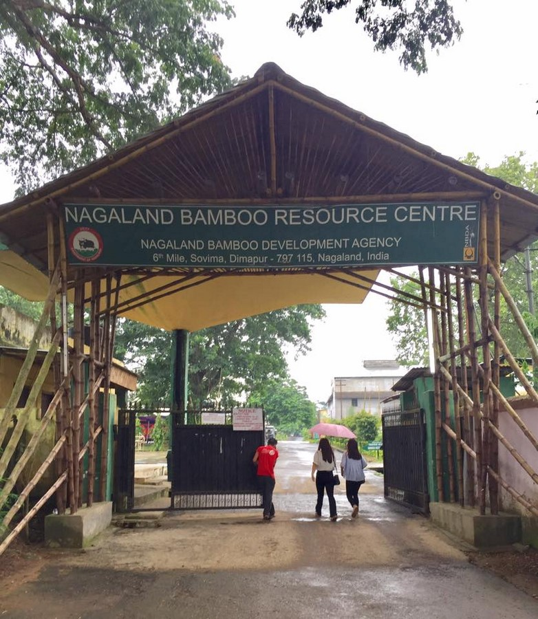 Nagaland Bamboo Development Agency (NBDA): Development of Bamboo in Nagaland - Sheet10