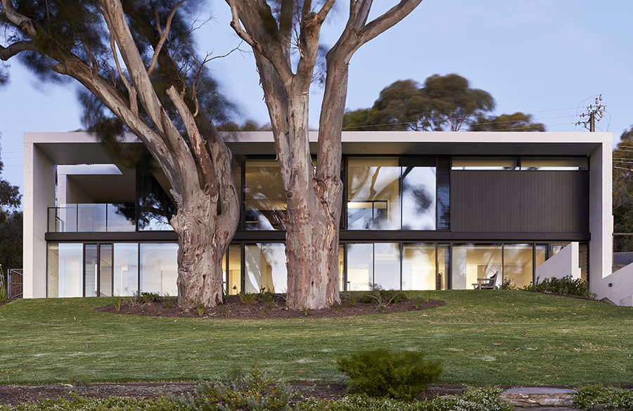 Sugar Gum House by Architects Ink