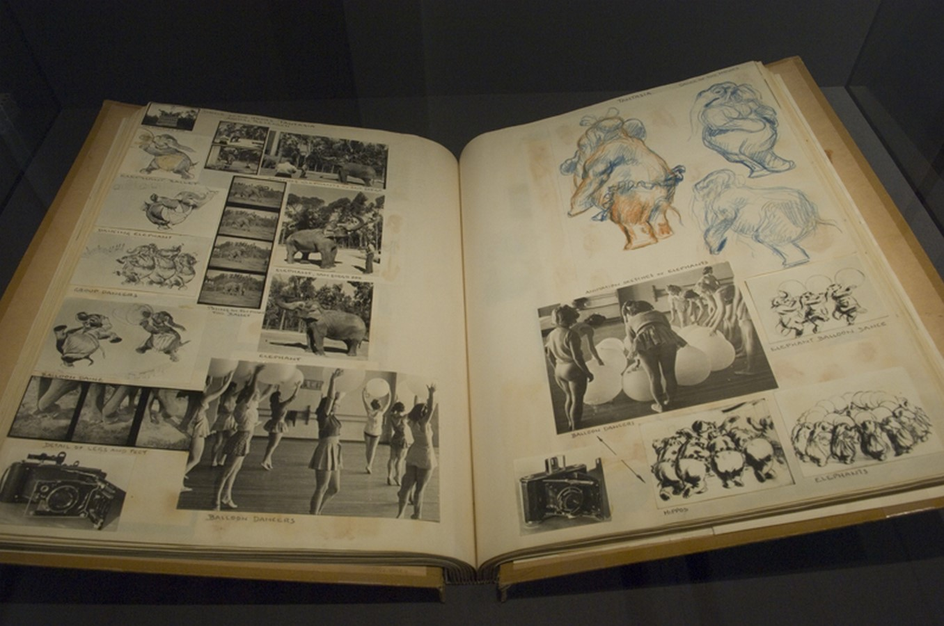 Walt Disney Family Museum by Rockwell Group- Telling a story through architecture - Sheet23