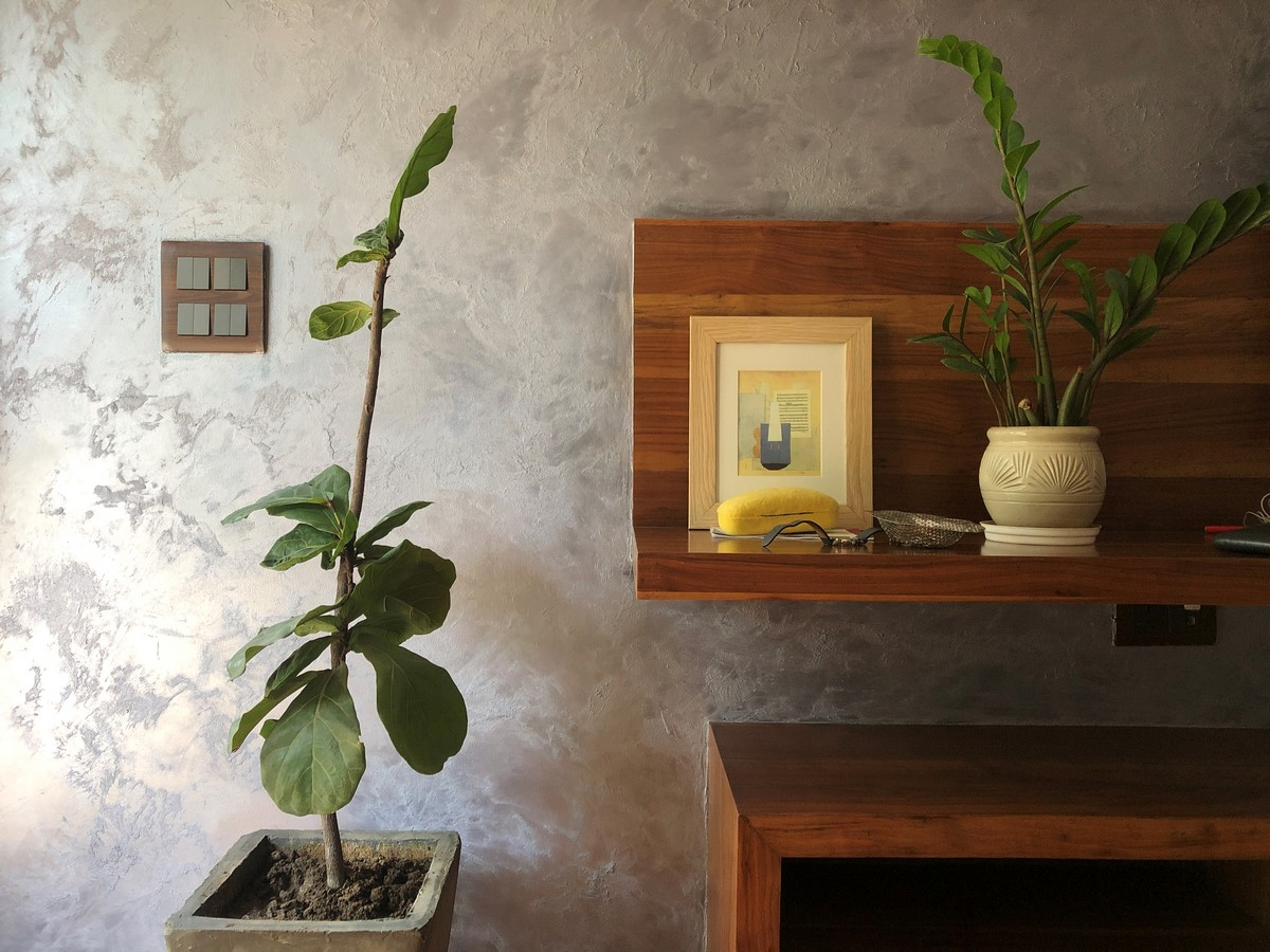 The Picture Perfect Plant in a Millennial Home - Sheet1