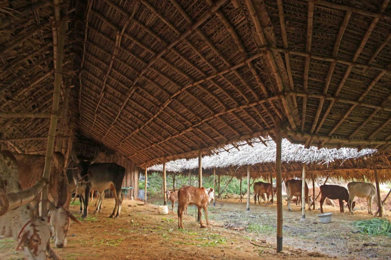 COW SHELTER, POLUR, TAMIL NADU - Sheet2