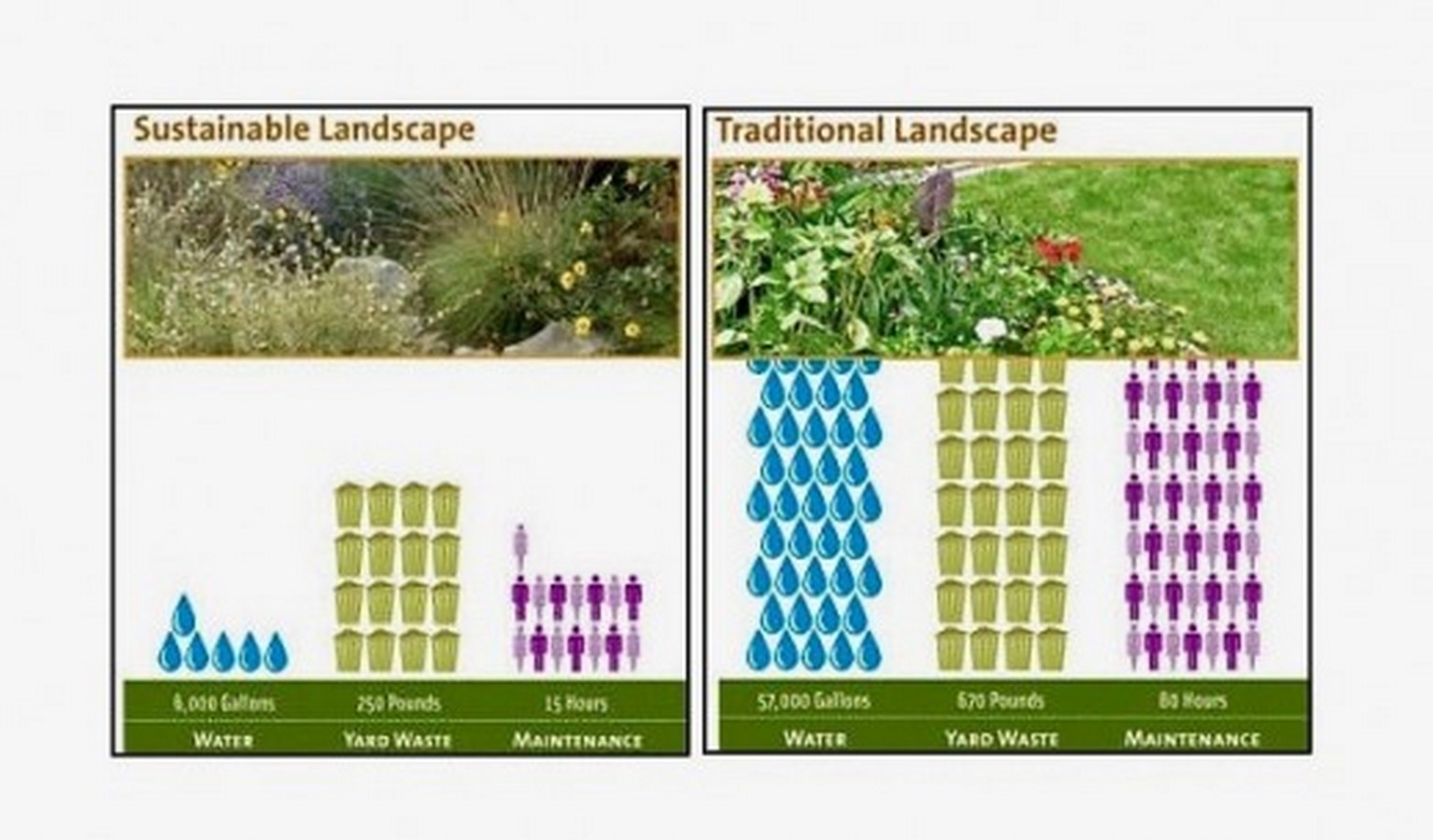 10 practices in Landscape architecture that you did not know were unsustainable - Sheet9
