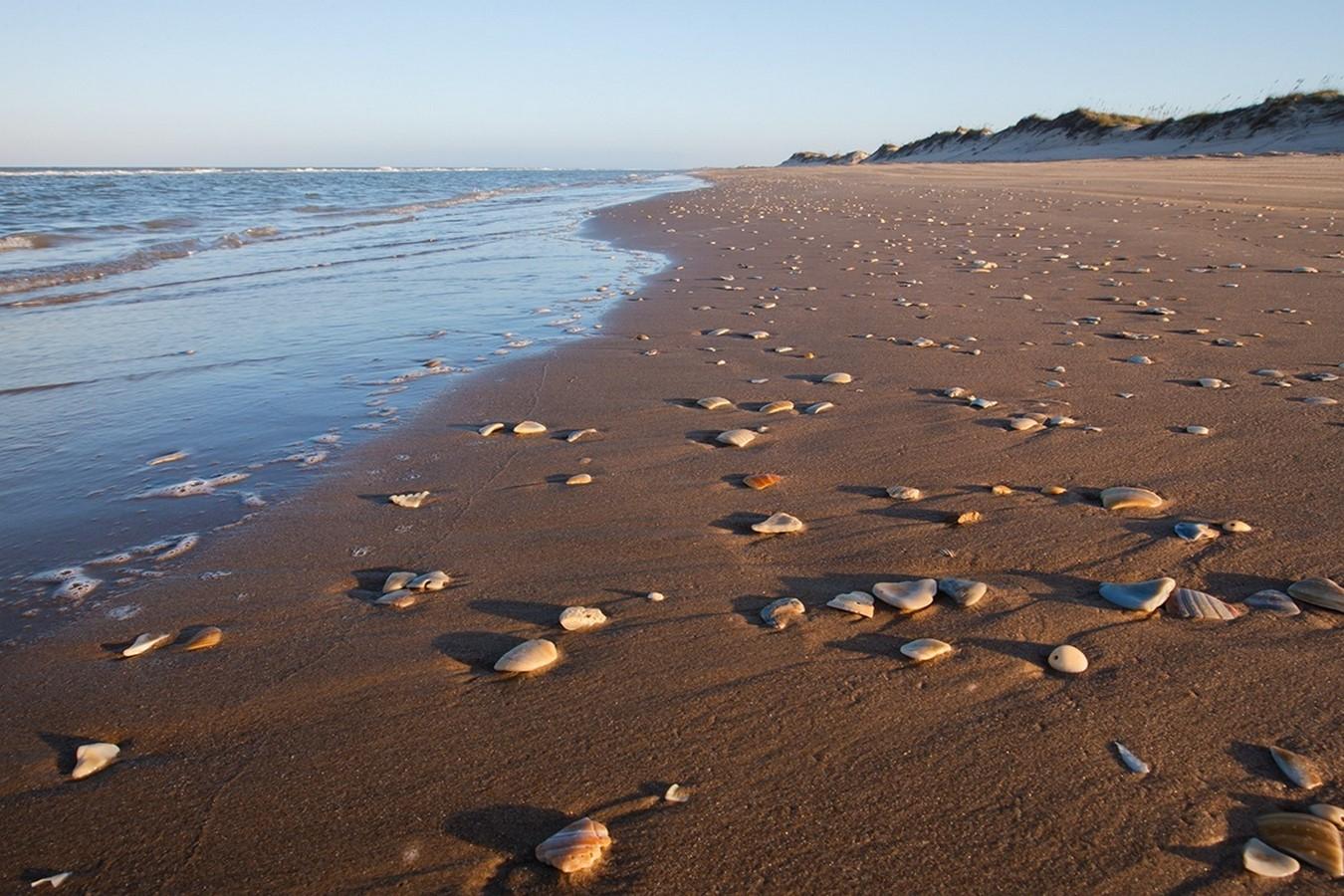 Sea Stone- Sheet1