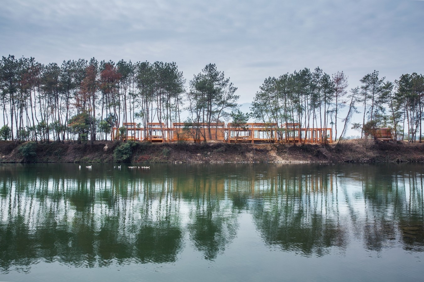 Pine Pavilion (2017-18) - Sheet1