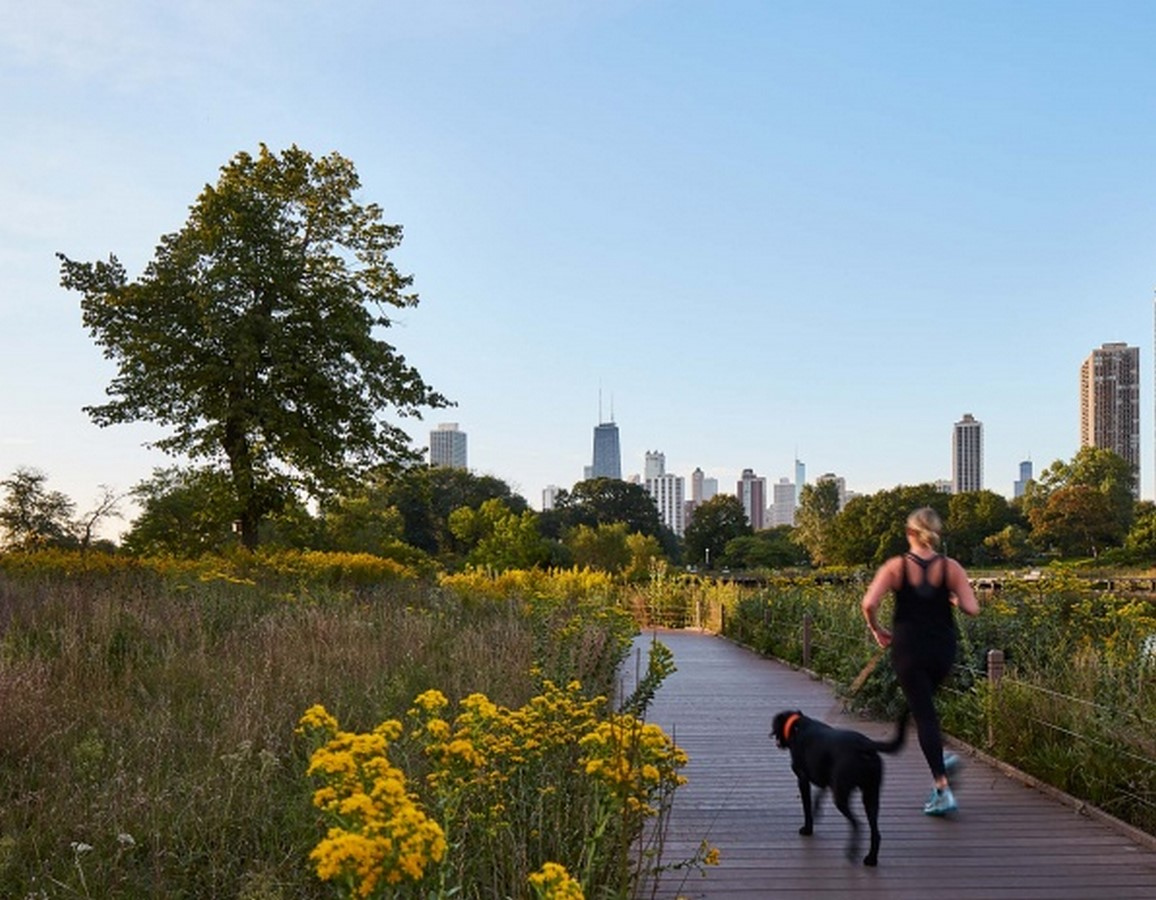 Nature Boardwalk at Lincoln Park Zoo by Studio Gang- A model for urban conservation and sustainability - Sheet10