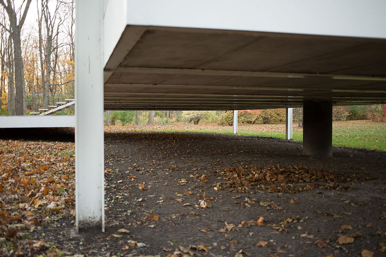 Farnsworth House by Mies van der Rohe: A bond between the House and Nature - Sheet8