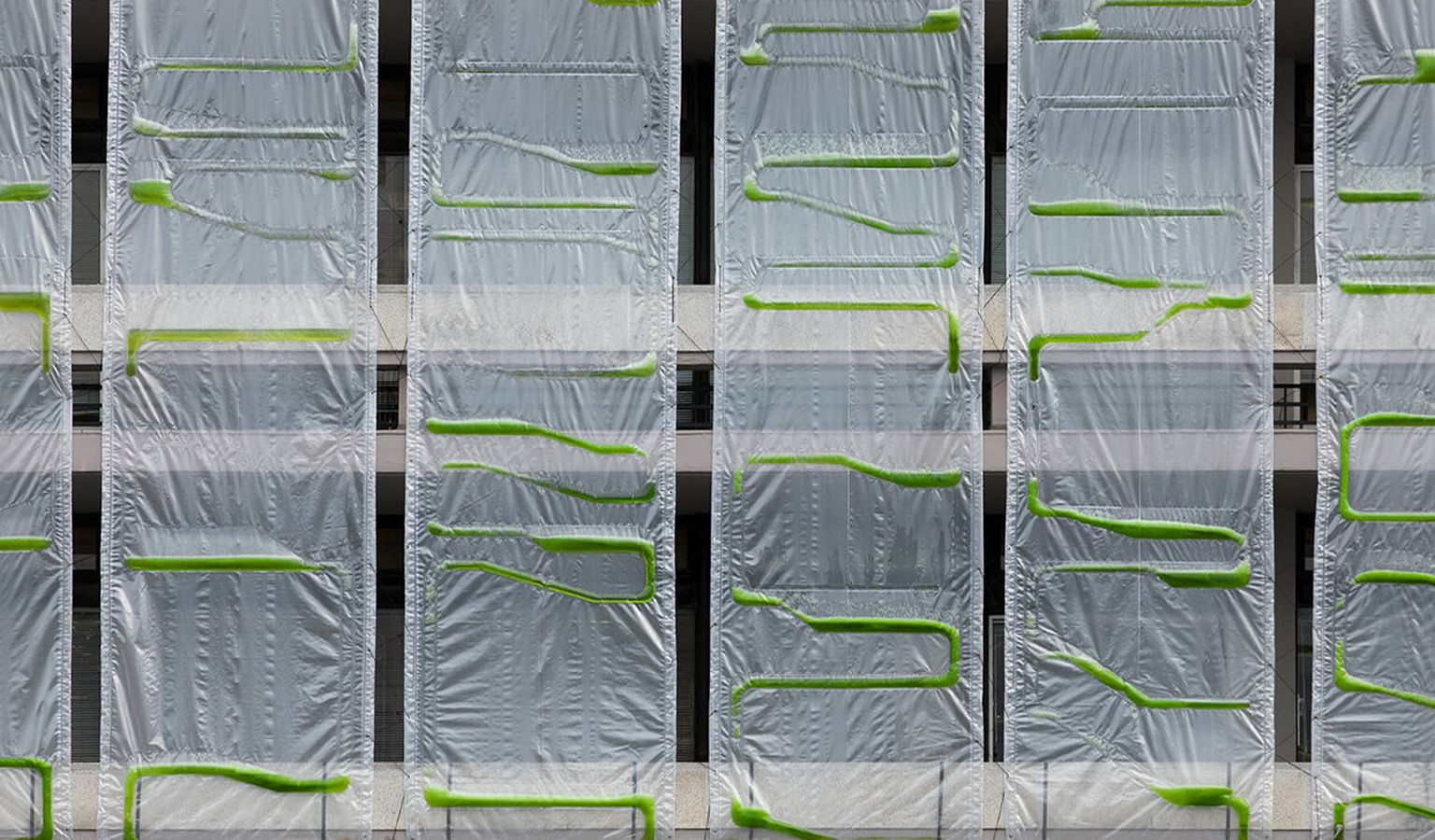 How can architects use Biomimicry while designing sustainable designs- Sheet12