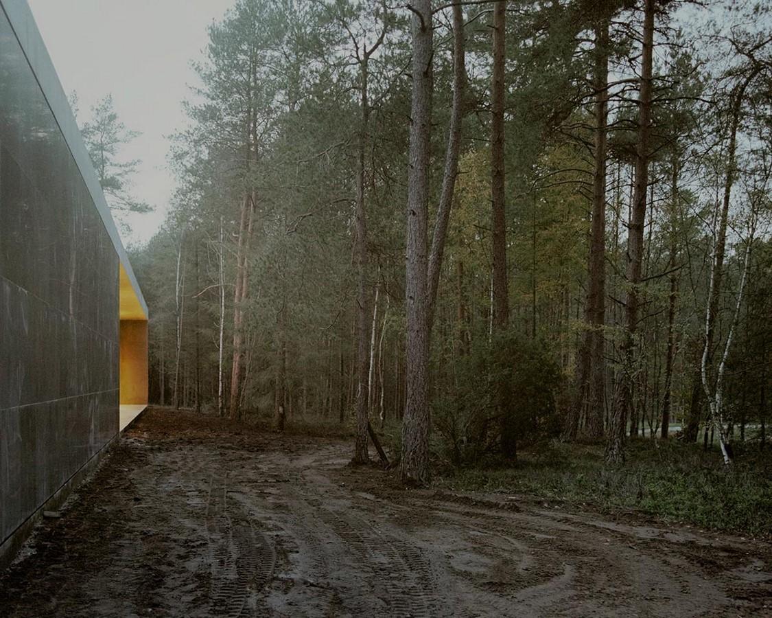 Serene Loenen Pavilion Commemorating Dutch Victims Among Pine Trees built by KAAN Architecten - Sheet9