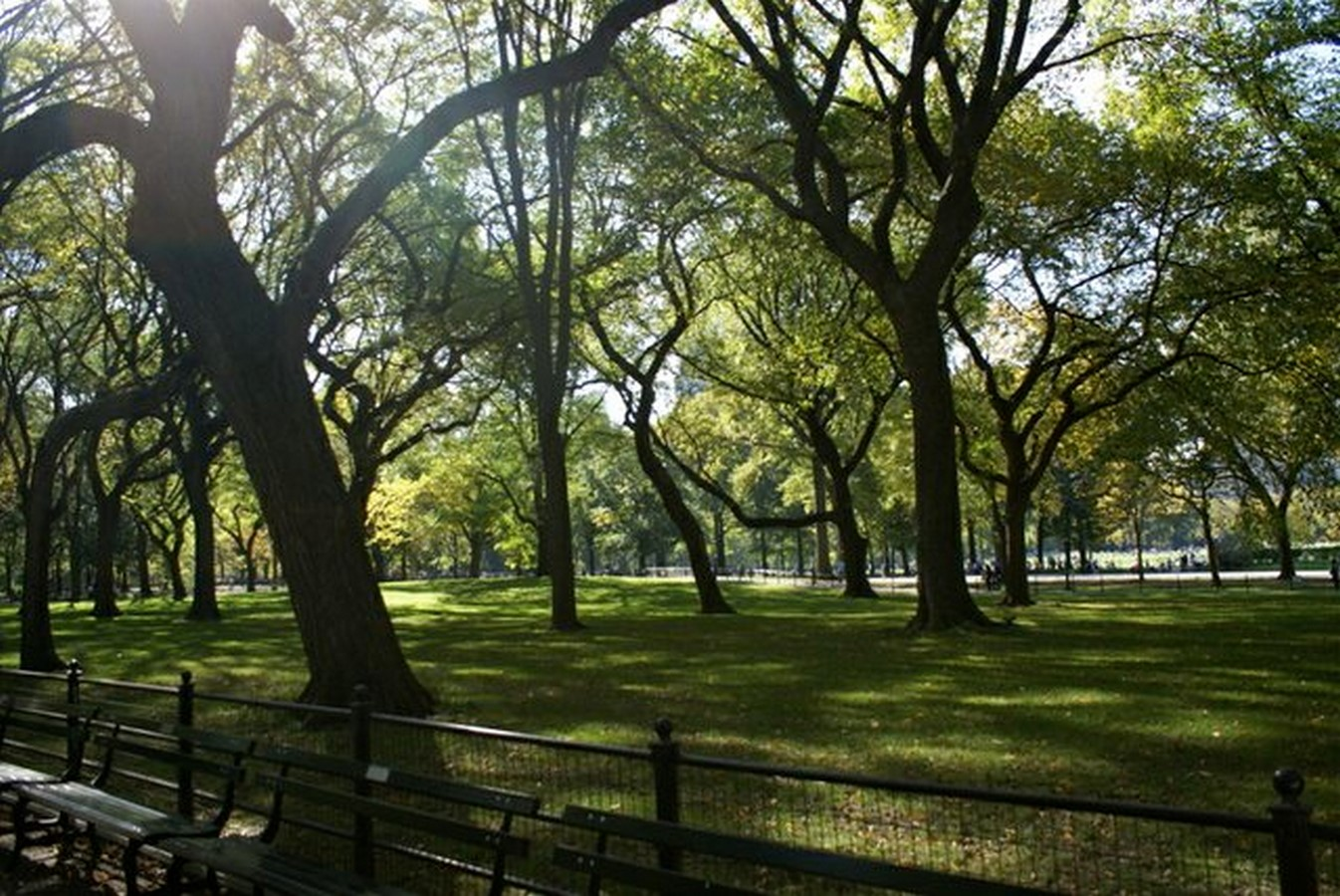The sustainable and cultural significance of Central Park on New York -Sheet17