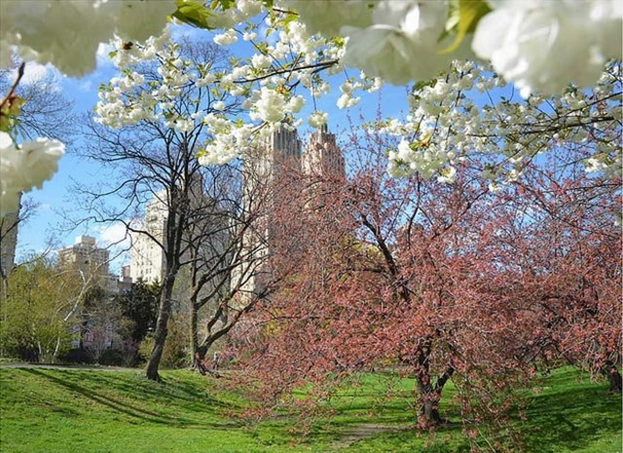 The sustainable and cultural significance of Central Park on New York -Sheet18