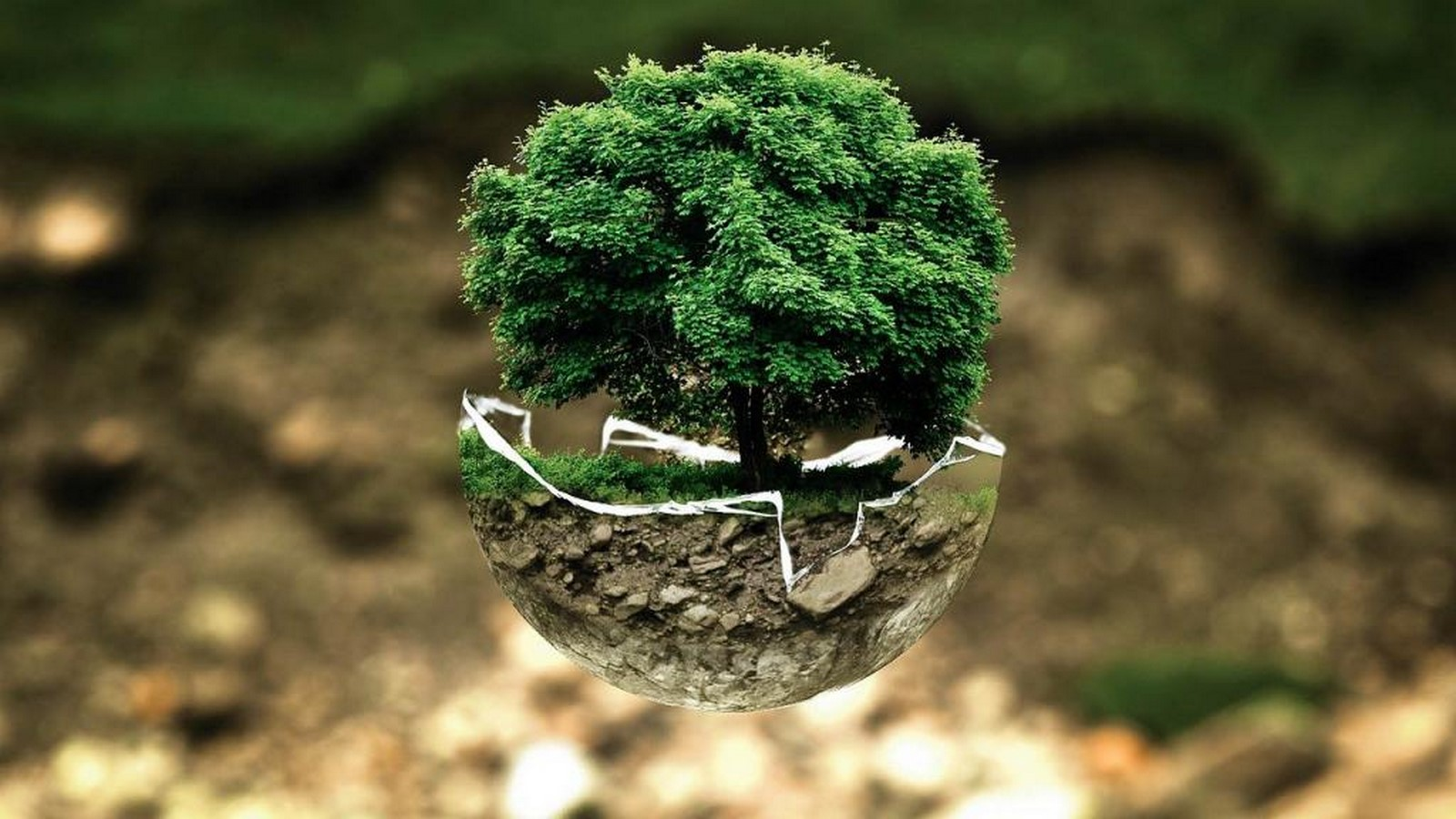 10 Ways your project is harming the environment