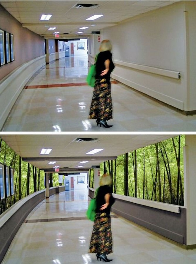 Healthcare Architecture: The psychology behind healing - Sheet2