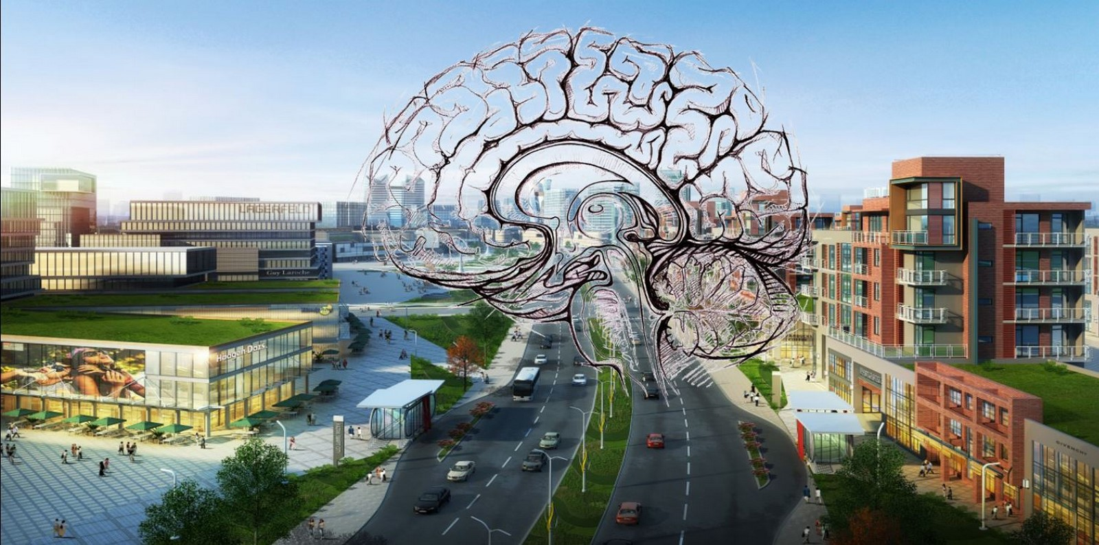 How to better understand spaces through the study of neuroarchitecture? - Sheet2