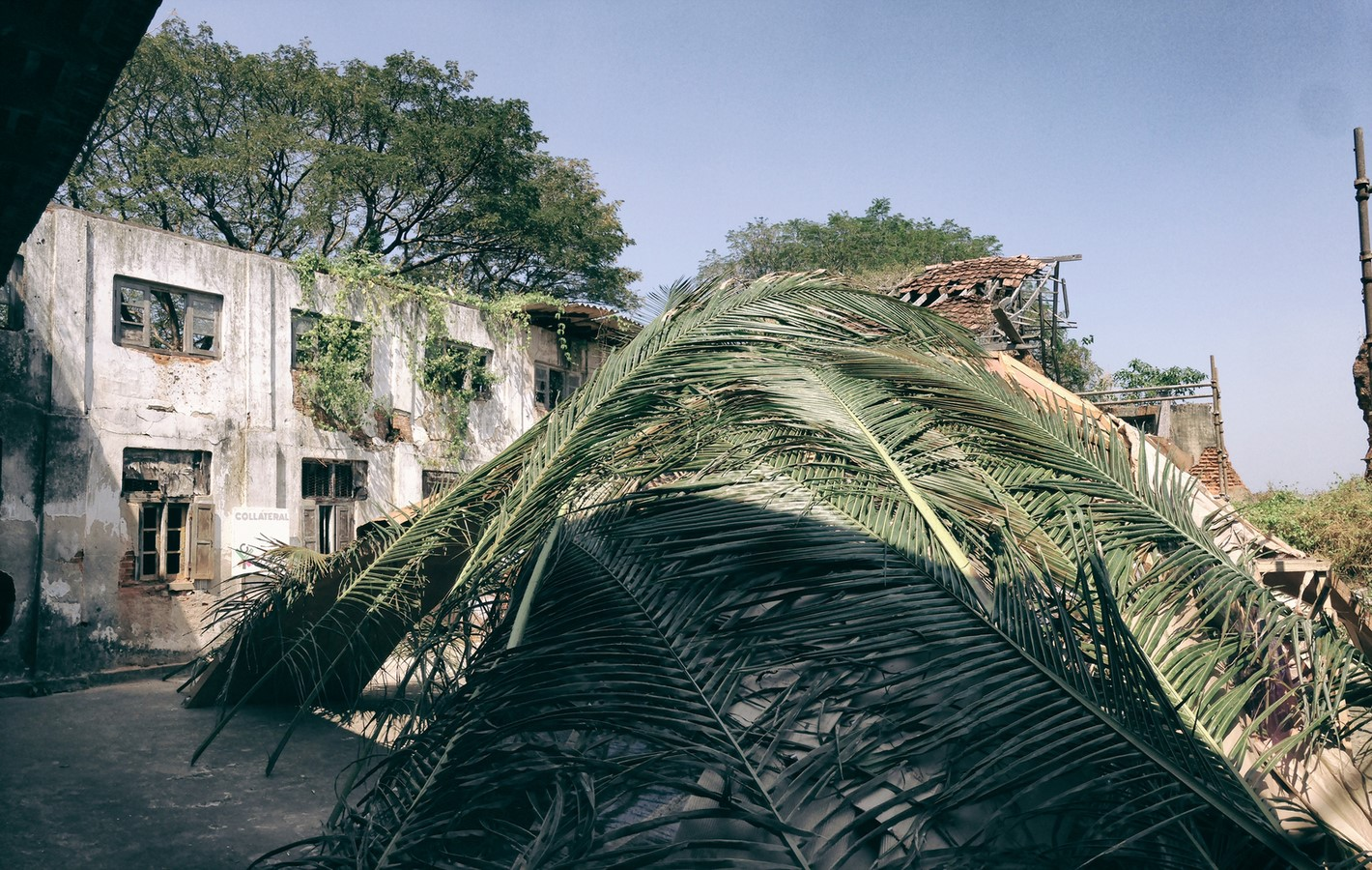 The Shell Mycelium Pavilion, India - Sheet3