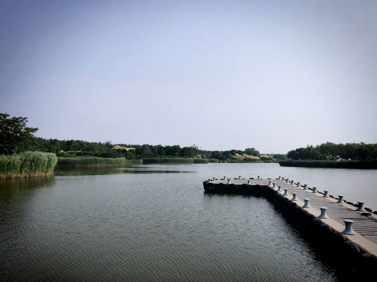 Natural escape through the Tianjin Lingang Ecology Wetland Park - Sheet2