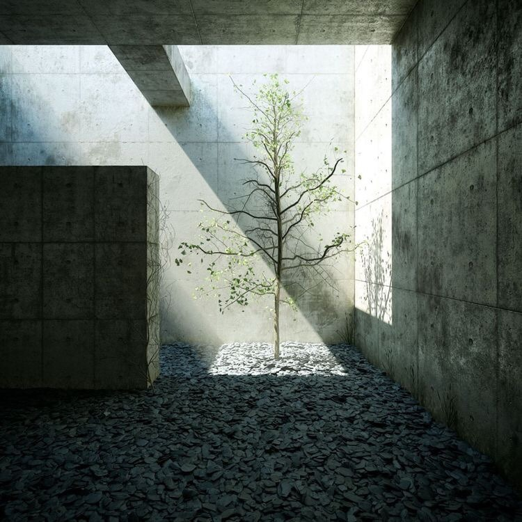 Chichu Art Museum by Tadao Ando Art museum in the Earth (Snehal Vyawahare) Sheet3