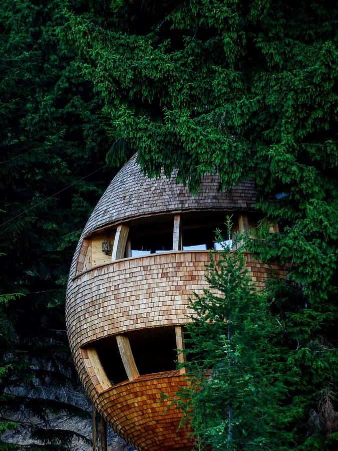 Pigna Tree Houses