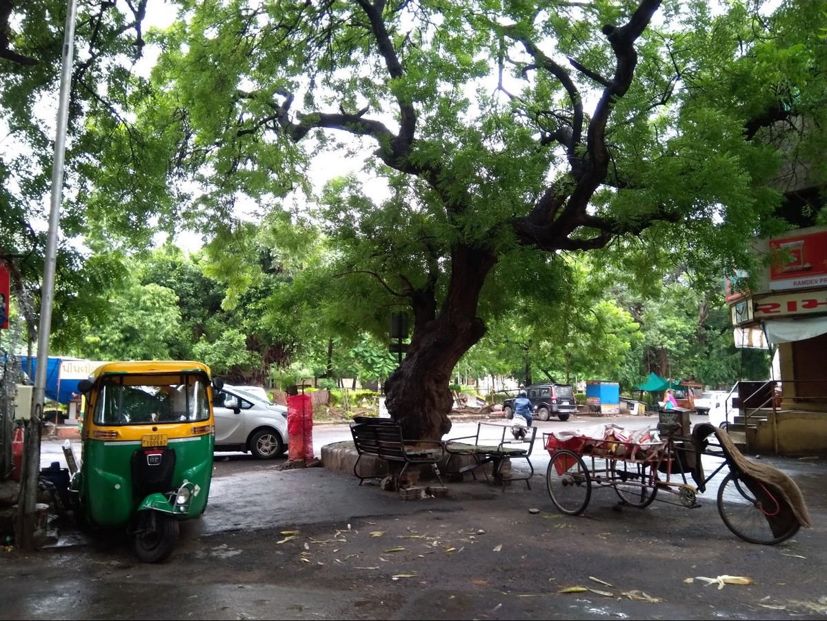 Mithakhali gam in Ahmedabad Understanding community living - Sheet2