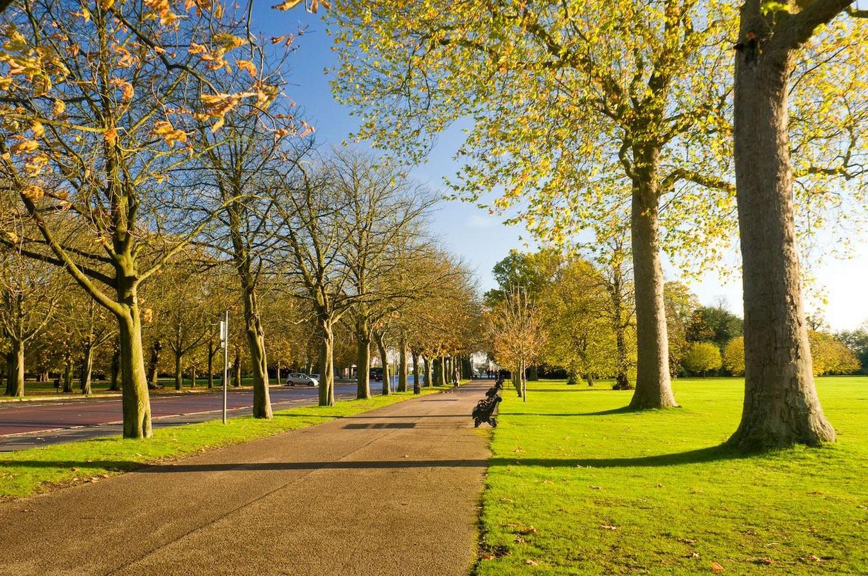 Greenwich Park, London- Sheet25