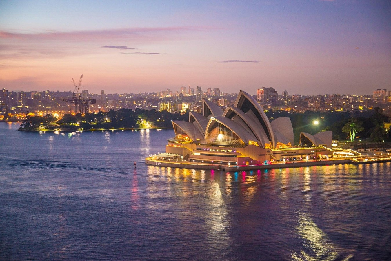 Career options for students after graduation in Australia