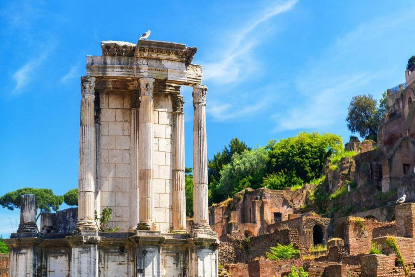 The Roman Forum, Rome: Heritage stuck in time - Sheet6