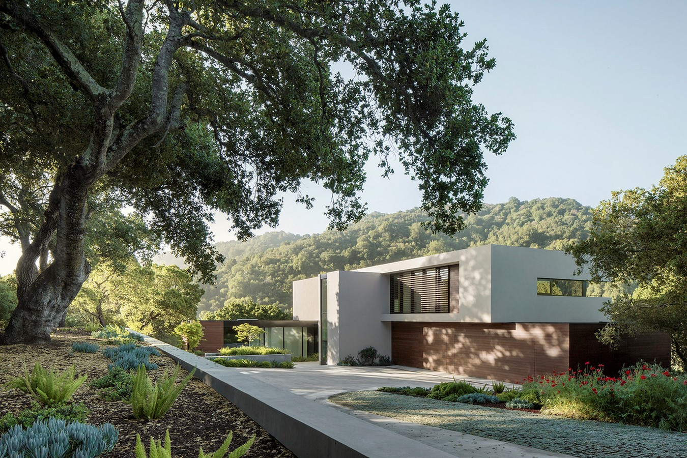 Slot House by Feldman Architecture - Sheet3