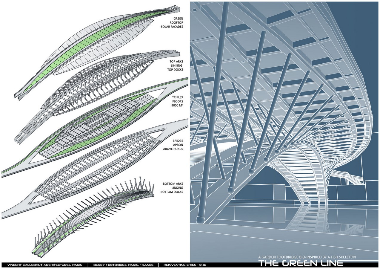 Design For Garden Footbridge Bio-Inspired By Fish Skeleton revealed by Vincent Callebaut Architectures - Sheet5
