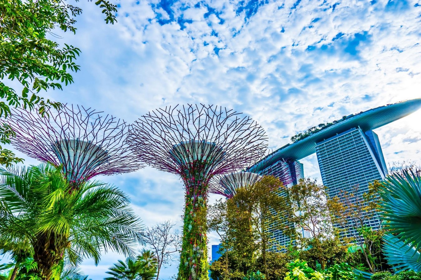 Gardens by the Bay - Sheet1