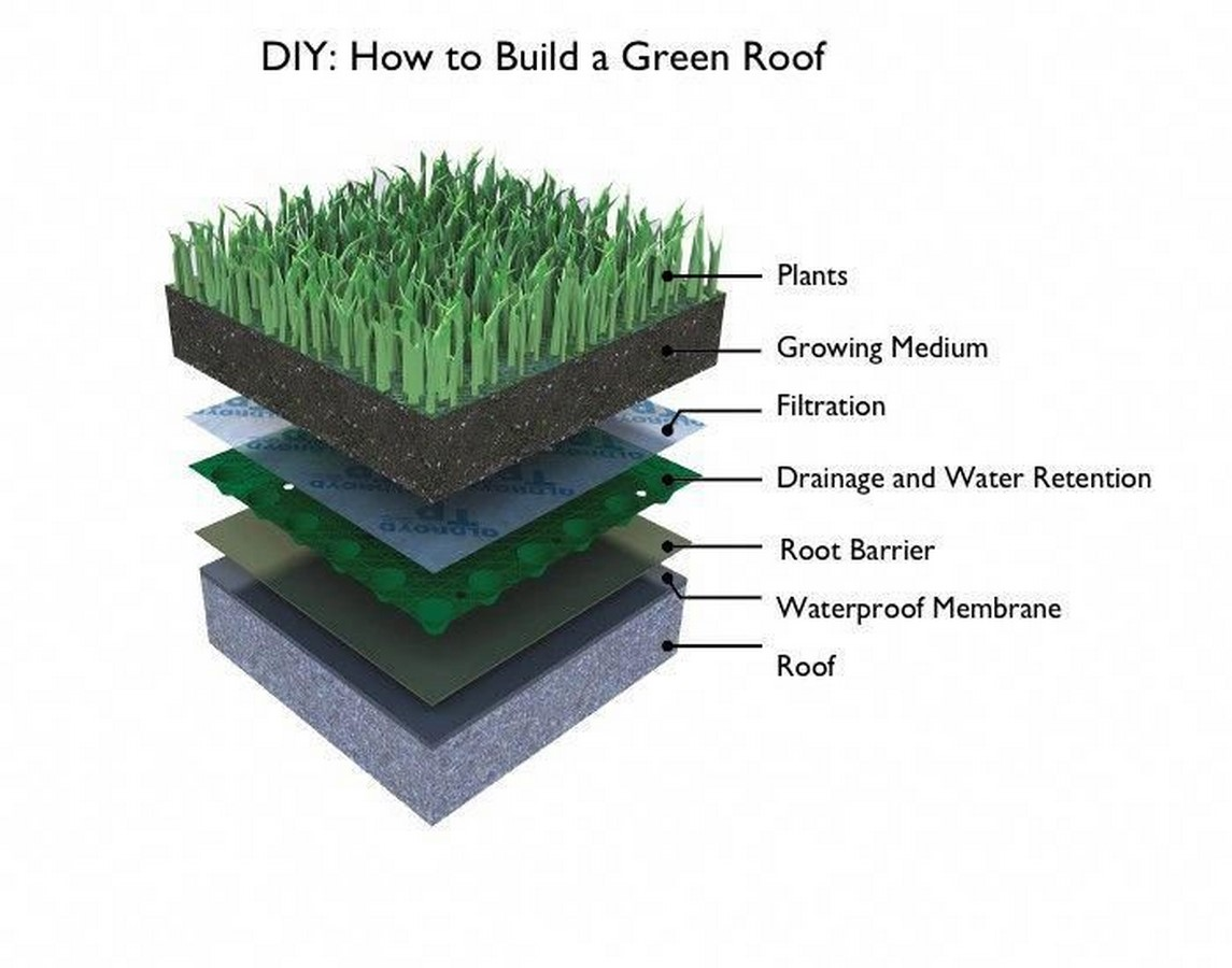 10 things to remember when designing rooftop gardens - Sheet16