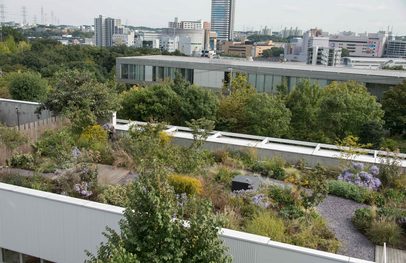 10 things to remember when designing rooftop gardens - Sheet19