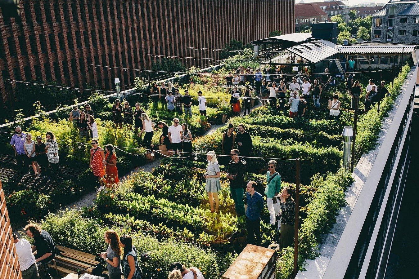 10 things to remember when designing rooftop gardens - Sheet2